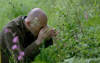 La vie en vert ! Balade botanique avec Patrick Martin